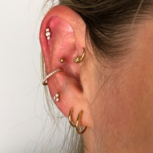 helix anti helix conch upper lobe high lobe piercing